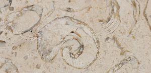 Piedra Lioz Clássico con acabado apomazado
