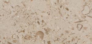Creme Perlina stone with honed finish