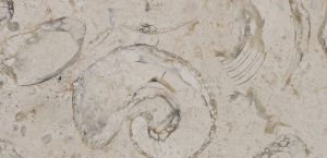 Pedra Lioz Clássico com acabamento amaciado