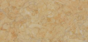 Lioz Gold stone with honed finish