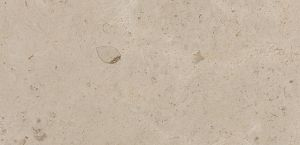 Creme Caribe stone with honed finish