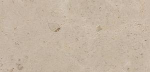 Creme Caribe stone with honed finish