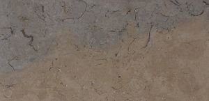 Estremadura Amazona stone with honed finish